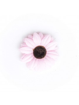 Light Pink Baby Daisy/Vintage
